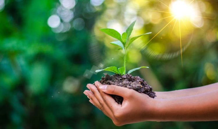 Role Of Corporate World In Environment Protection: Analysis Of Corporate Social Responsibility (By Yashi Goel & Vani Garg)